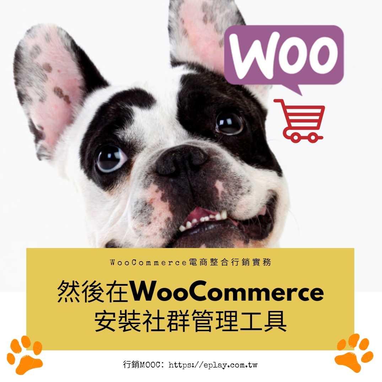 WooCommerce也可以自動化進行FB/IG行銷,怎麼辦到的?